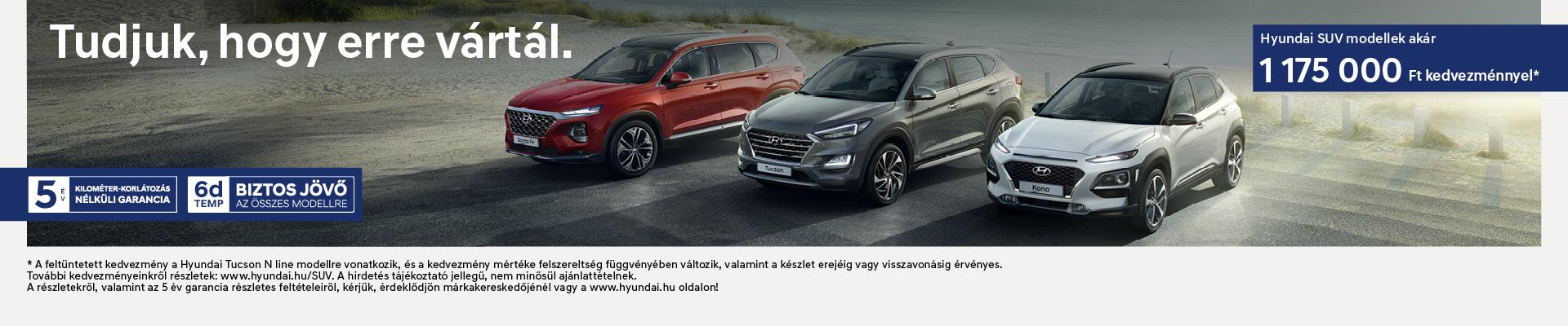 Hyundai SUV Range