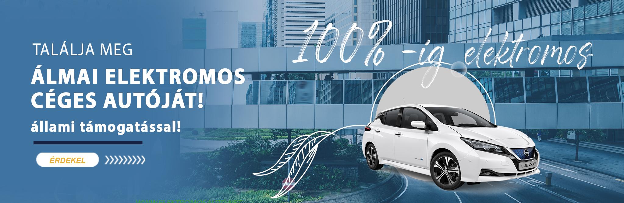 Elektromos autó támogatás
