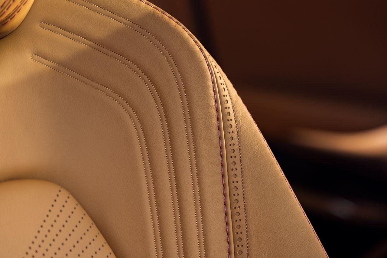 Aston Martin DBX_31.jpg